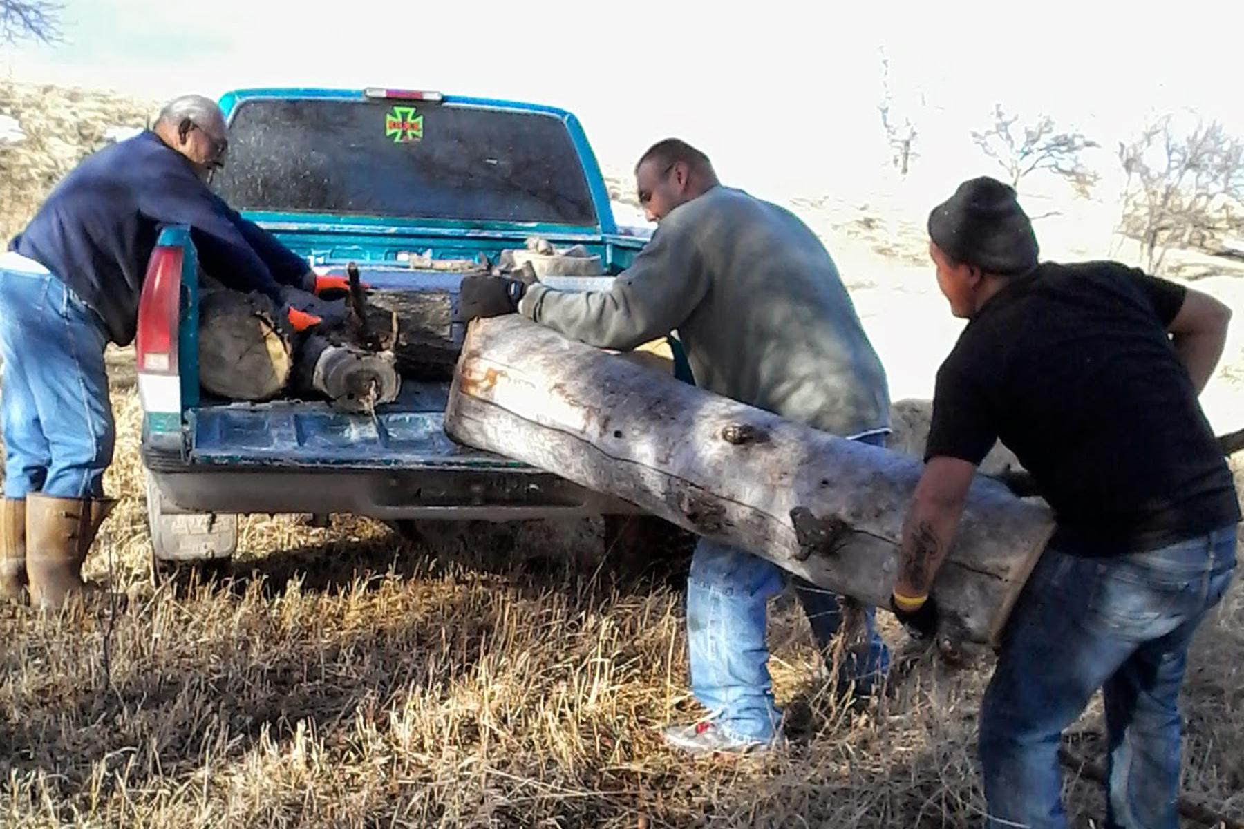 Wood cutting 7